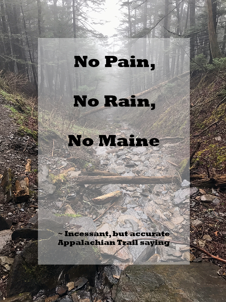 No pain no rain no Maine